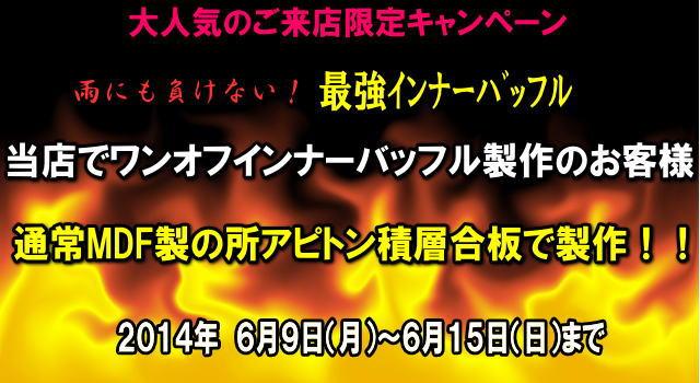 discount-campaign-apitonn-2014-06-15.jpg