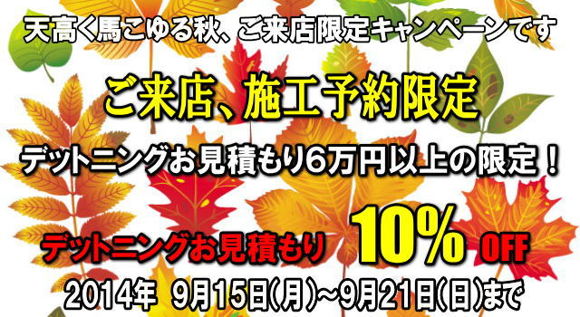 discount-campaign-speaker-plicedown-2014-09-21.jpg