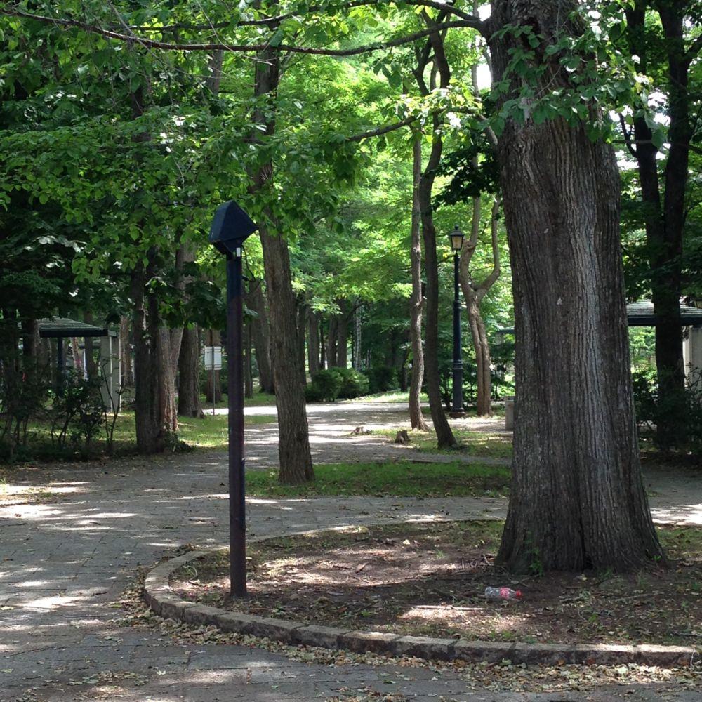 平岡の公園。