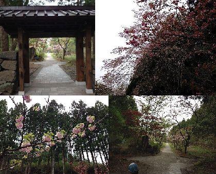 2014GW日光慈雲寺