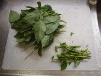 モロヘイヤ納豆19