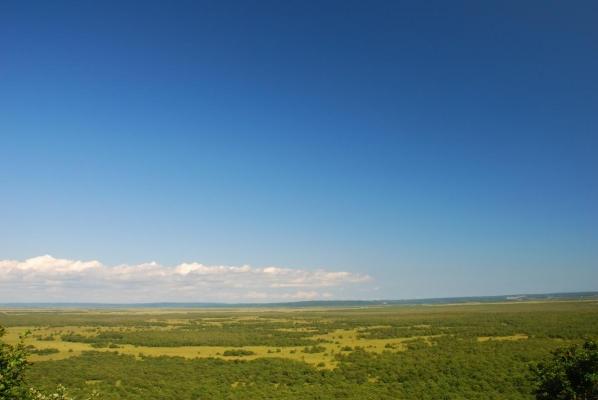 釧路湿原 サテライト展望台・・・