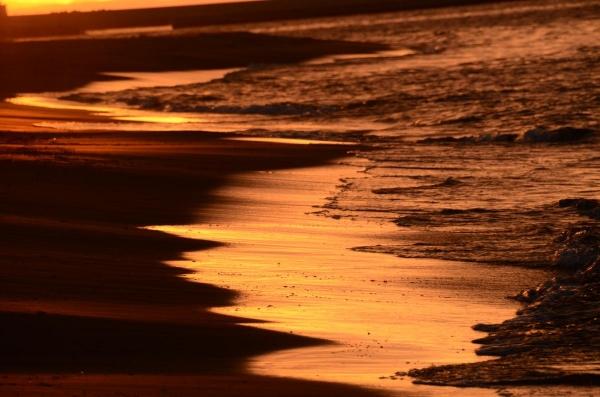 2014斜里海岸