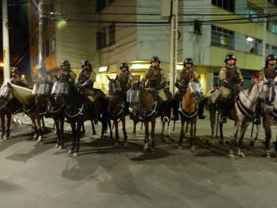 ブラジル馬