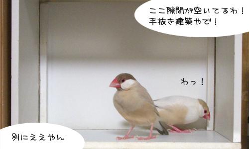 白い箱は別荘_5