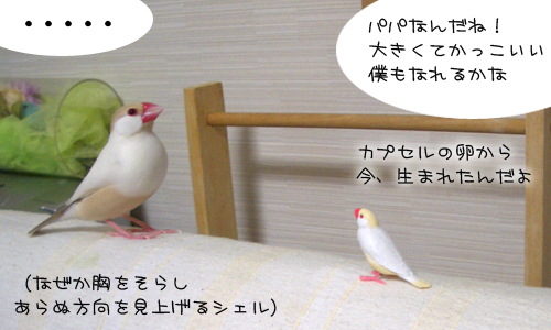 ニューガチャ文登場_2
