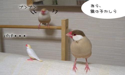 ニューガチャ文登場_3