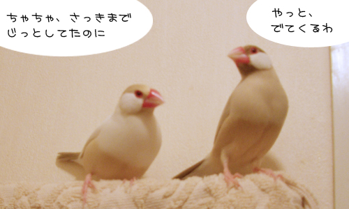 出待ち_4