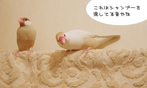 出待ち_2