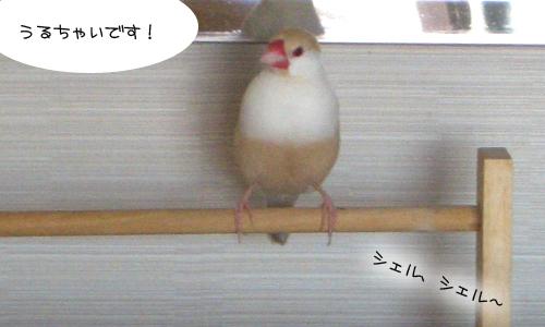 練習中_3