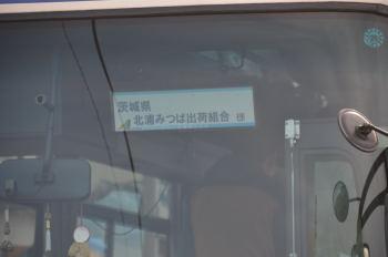 DSC_1816.jpg