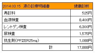 20140315 診療明細書【凛】