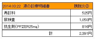 20140322 診療明細書【凛】