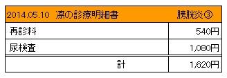 20140510 診療明細書【凛】