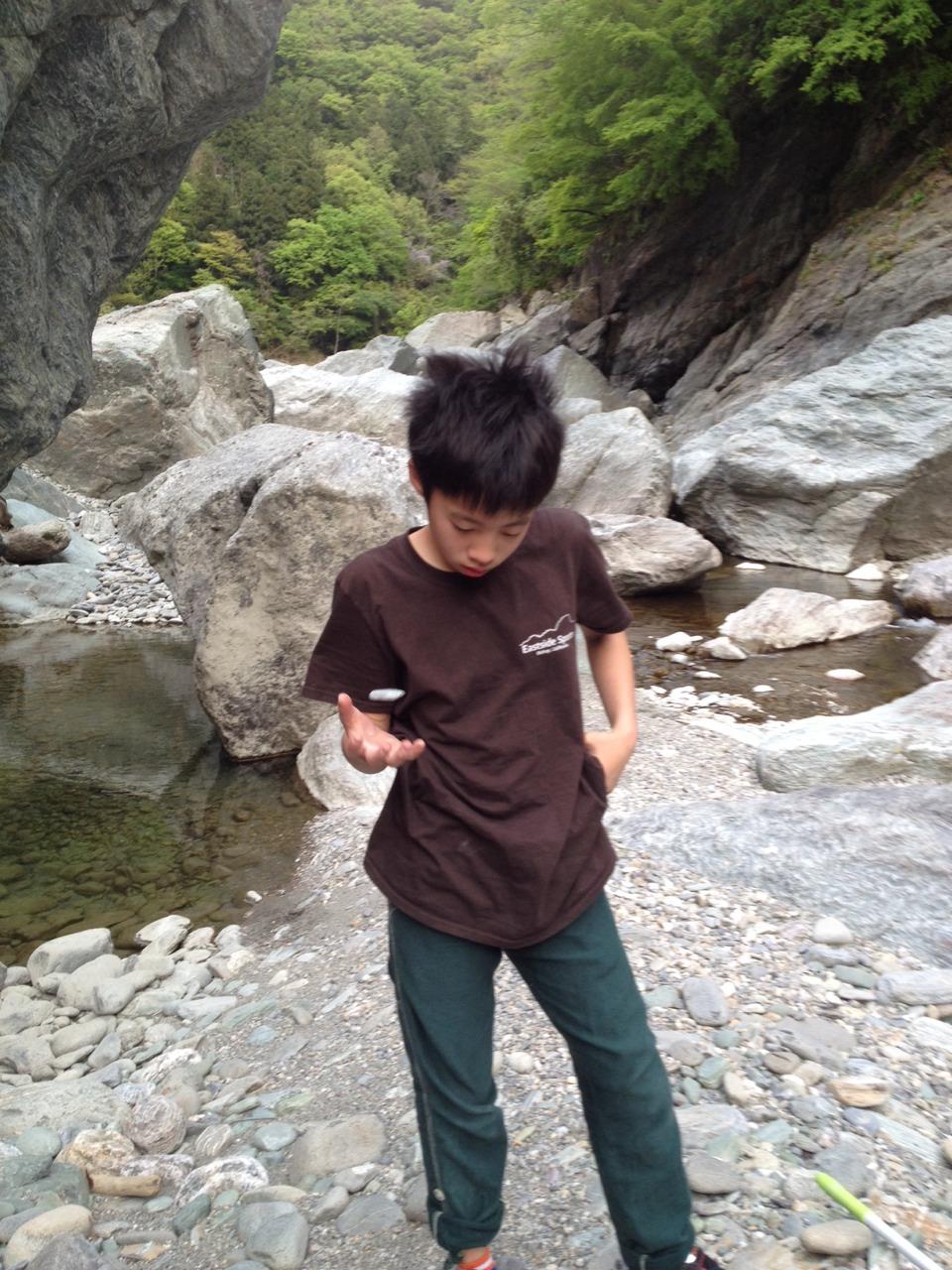 S__7708696.jpg