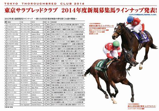 東京TC2014年募集馬