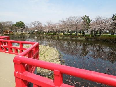 八つ橋と池