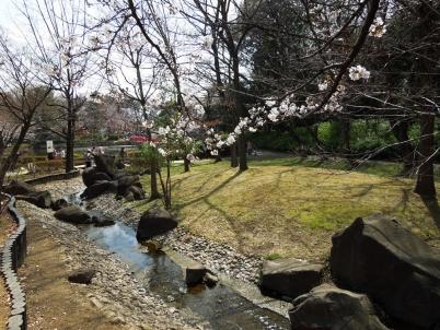 公園の小川