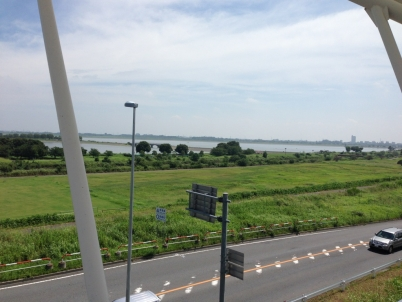 渡良瀬遊水地1