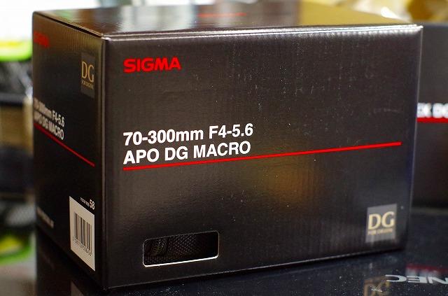 s-IMGP9581.jpg