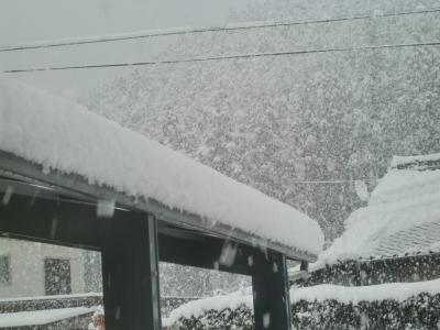 2月14日雪2