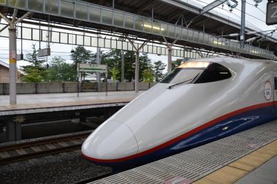 軽井沢駅4