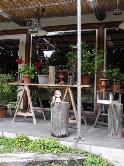 小鳥のレストラン8