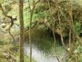 払沢の滝 (3)