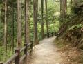 払沢の滝 (4)
