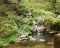 払沢の滝 (5)