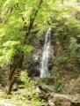 払沢の滝 (10)