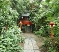 鷲宮神社 (8)