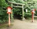 鷲宮神社 (9)