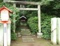 鷲宮神社 (13)
