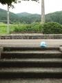 ゆのさぎ駅 (5)