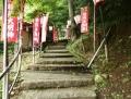 yuwakuonsein (1)
