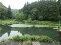 yuwakuonsein (8)