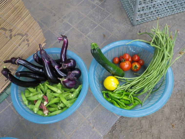 収穫2_14_07_18
