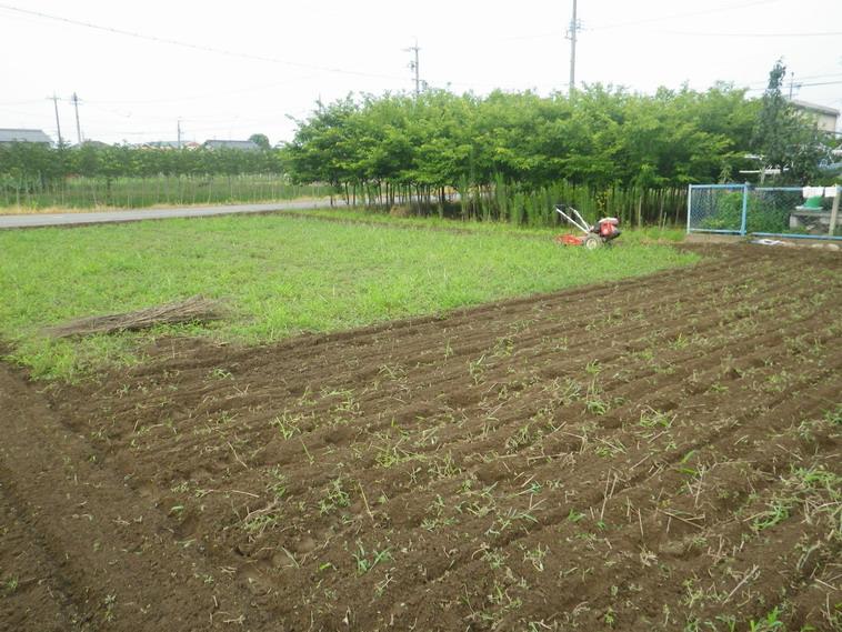 隣の畑1_14_07_22