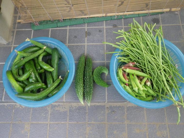 収穫1_14_07_31
