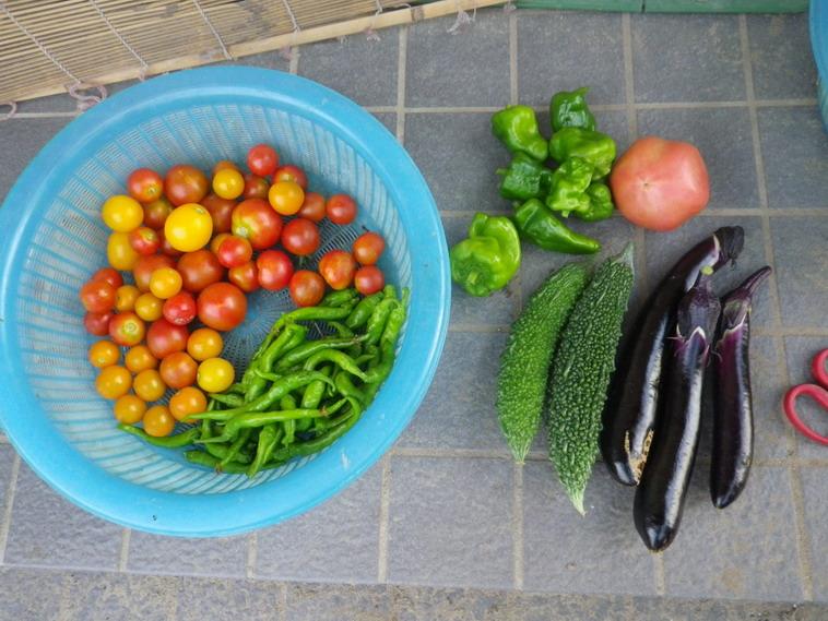 収穫2_14_08_05