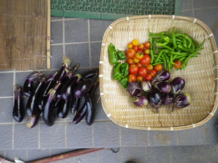 収穫2_14_08_21