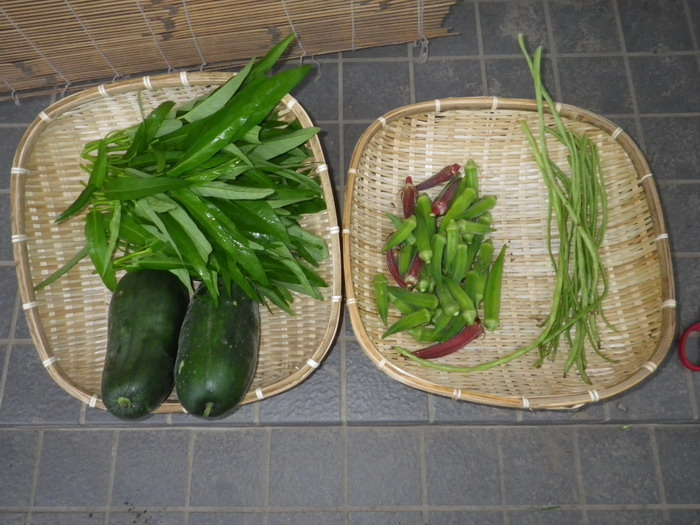 収穫14_09_01