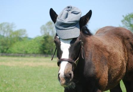 6・母仔・ハーツ帽子