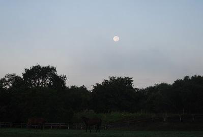 9・シーザ・夜明けの月