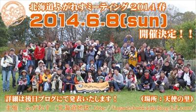 ミーティング2014春フライヤー