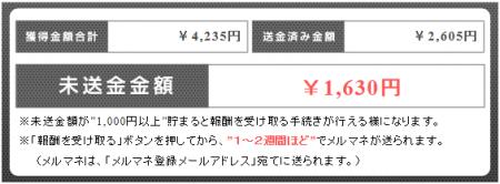 20140529ルポ