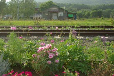 旧仁宇布駅1