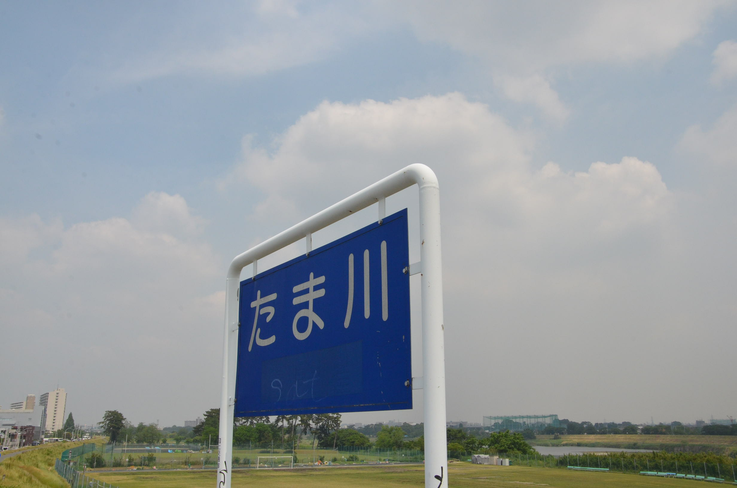 DSC_5861.jpg