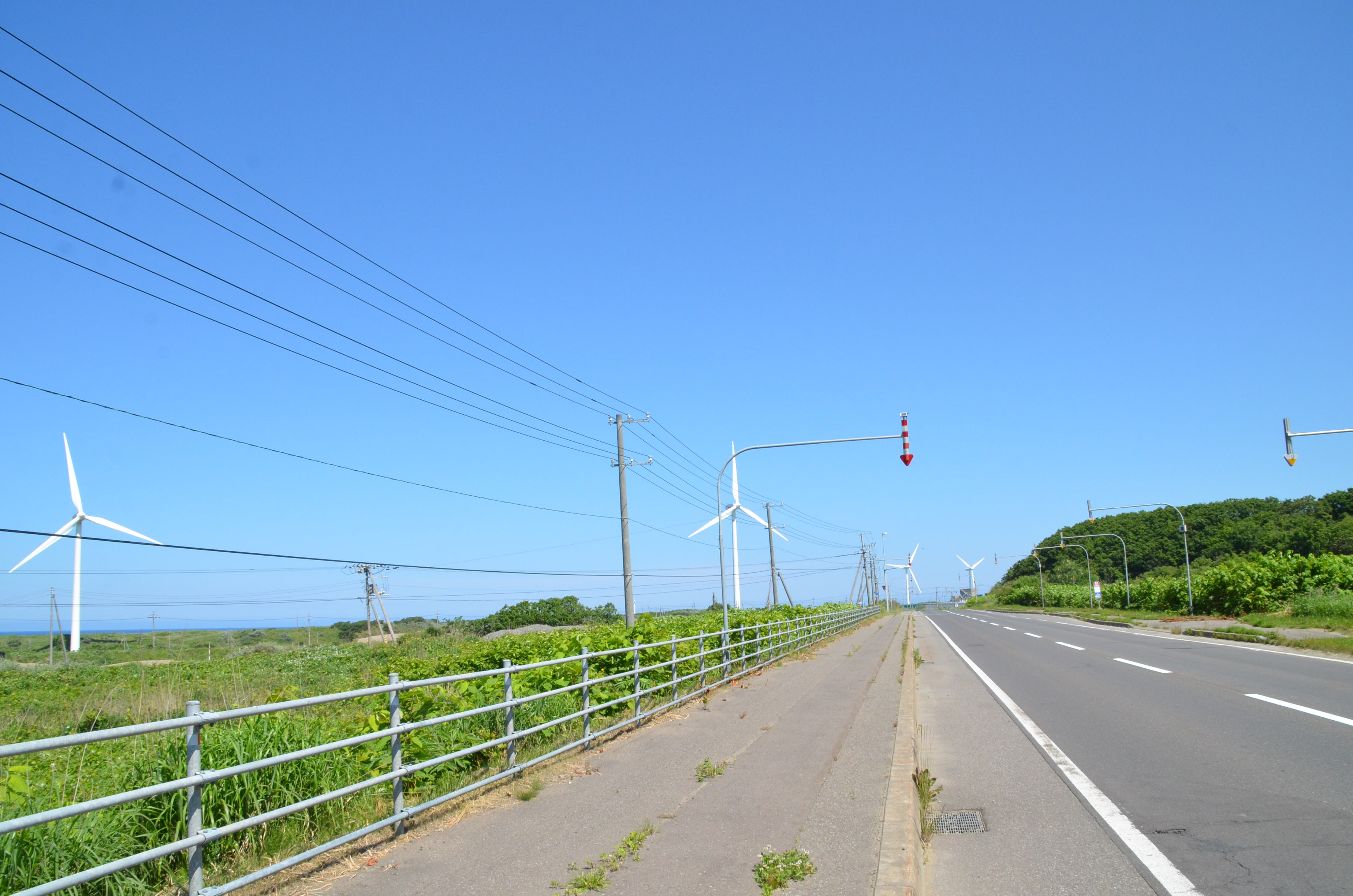 DSC_9177.jpg